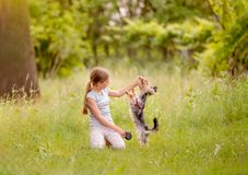 Bambina che gioca con il cane del terrier Fotografie Stock Libere da Diritti