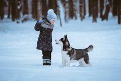 Bambina che gioca con il husky immagine stock libera da diritti