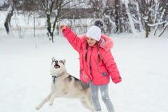 Bambina che gioca con un cane della razza del husky siberiano nel winte fotografie stock
