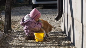 Bambina che gioca con un film del gatto video d archivio