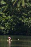 Bambina che gioca nel fiume. immagini stock libere da diritti