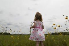 Bambina che osserva fuori un giacimento di fiore Immagini Stock