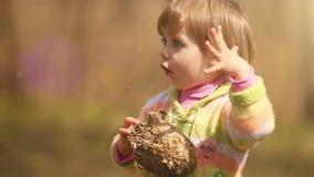 Bambina che perde tempo intorno con un vecchio vespiary (il nido delle api) archivi video
