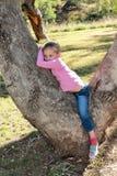 Bambina che risiede in un albero di gomma Immagini Stock