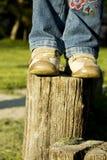 Bambina che si leva in piedi sul ceppo Fotografie Stock