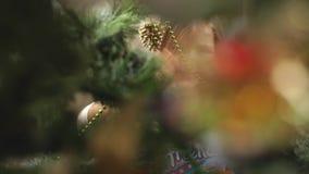 Bambina che si nasconde dietro l'albero di Natale video d archivio