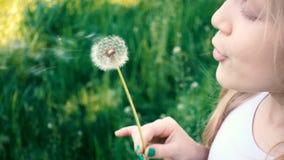 Bambina che soffia al fiore del dente di leone su prato inglese verde archivi video