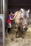 Bambina che spazzola il suo cavallo favorito immagini stock