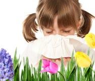 bambina con febbre di fieno Fotografia Stock