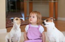 Bambina con i suoi cani Fotografie Stock Libere da Diritti