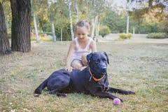 Bambina con il suo cane Testa nera del labrador Immagine Stock