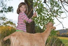 Bambina con la capra su un pascolo immagini stock libere da diritti