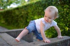 Bambina coraggiosa che impara arrampicarsi Fotografia Stock Libera da Diritti
