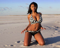 Bambina del bikini Fotografia Stock Libera da Diritti