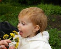 Bambina e denti di leone Fotografia Stock