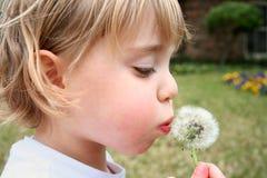 Bambina e fiore Fotografia Stock