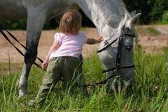 Bambina e grande testa del cavallo Immagini Stock