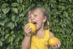 Bambina e limoni Immagine Stock Libera da Diritti