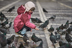 Bambina nei piccioni d'alimentazione di un quadrato di città fotografie stock