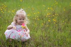 Bambina nel giacimento di fiore Immagini Stock Libere da Diritti