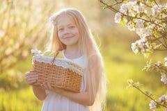 Bambina nel giardino del fiore con il canestro delle mele Fotografie Stock Libere da Diritti