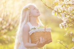 Bambina nel giardino del fiore con il canestro delle mele Fotografia Stock