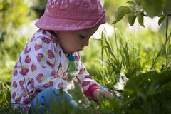 Bambina nell'erba Immagini Stock Libere da Diritti