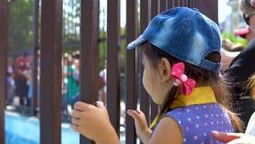 Bambina nello zoo video d archivio