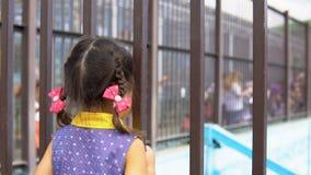 Bambina nello zoo stock footage