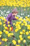 Bambina sul campo dei tulipani Fotografie Stock Libere da Diritti