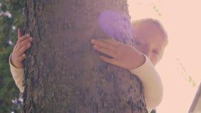 Bambina sveglia che abbraccia un albero stock footage