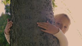 Bambina sveglia che abbraccia un albero archivi video