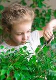 Bambina sveglia che lavora con i fiori fotografia stock libera da diritti
