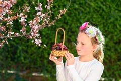 Bambina sveglia che posa con la frutta fresca nel giardino soleggiato Bambina con il canestro dell'uva fotografie stock libere da diritti