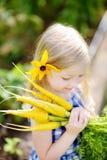 Bambina sveglia che tiene un mazzo di carote gialle fresche Fotografia Stock
