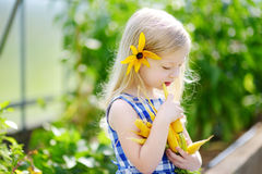 Bambina sveglia che tiene un mazzo di carote organiche fresche Fotografia Stock Libera da Diritti