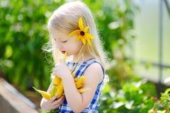 Bambina sveglia che tiene un mazzo di carote organiche fresche Fotografia Stock