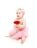 Bambina sveglia con il fiore Immagini Stock Libere da Diritti