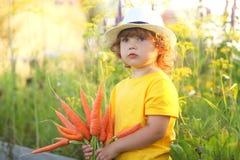 Bambina sveglia con il mazzo di carota organica Immagini Stock Libere da Diritti