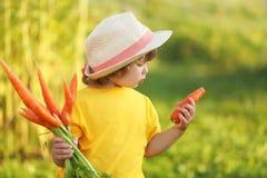 Bambina sveglia con il mazzo di carota organica Fotografie Stock