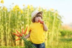 Bambina sveglia con il mazzo di carota organica Fotografia Stock