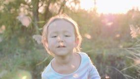 Bambina sveglia divertendosi i semi di salto del dente di leone mentre rilassandosi alla natura stock footage