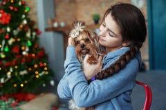 Bambina in un maglione blu che abbraccia un cane Il concetto di Chri Immagini Stock Libere da Diritti