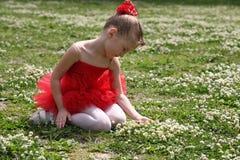 Bambina in un tutu fotografia stock libera da diritti