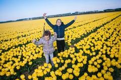 Bambine adorabili che giocano in un campo dei tulipani gialli di fioritura immagine stock libera da diritti