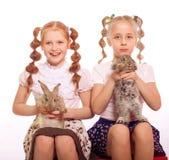 Bambine con i conigli in mani Fotografia Stock