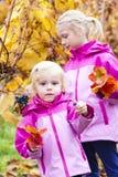 Bambine con l'uva in autunno Immagine Stock