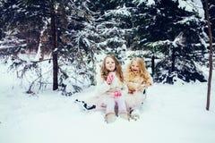 Bambine divertendosi insieme nella foresta di inverno immagini stock libere da diritti