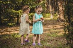 Bambine nella foresta con i funghi Fotografia Stock Libera da Diritti