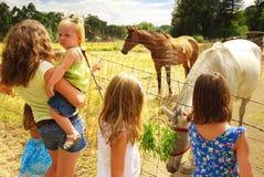Bambini al ranch Fotografia Stock